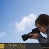 Naturpixel_Montseny_020