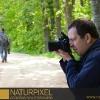 Naturpixel_Montseny_023