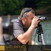 Naturpixel_Montseny_027