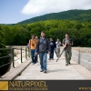 Naturpixel_Montseny_031