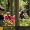 Naturpixel_Montseny_032