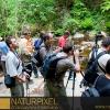 Naturpixel_Montseny_033