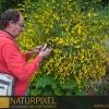 Naturpixel_Montseny_035_02