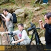 Naturpixel_Montseny_038_01