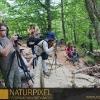 Naturpixel_Montseny_038_03