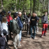 Naturpixel_Montseny_002