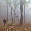 Naturpixel_Montseny_011