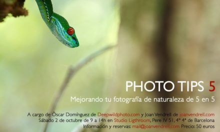 """Photo Tips 5″ mejorando tu fotografía de naturaleza de 5 en 5"