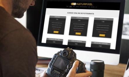 Cómo funcionan nuestros Cursos de Fotografía Online