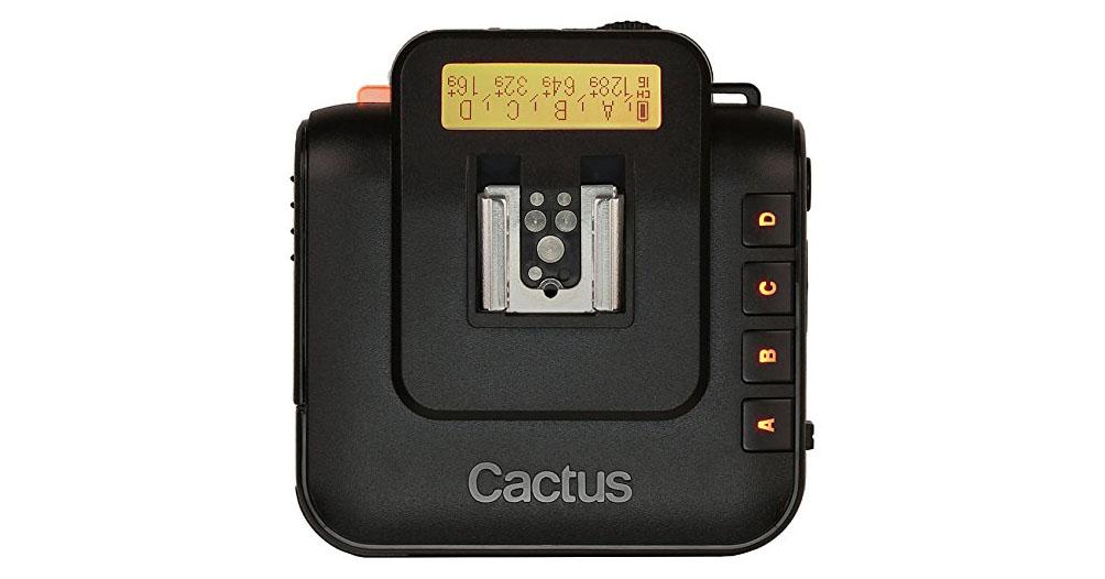 Cactus-v6