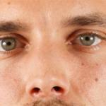 Retratos extremadamente nítidos a 900 megapixels