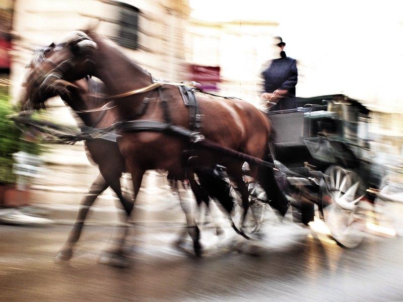 "Al otro lado del mundo. ""Viajeros, turistas o curiosos"" Viena, Austria | 2014"