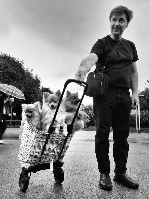 Fujifilm X20 – f/7 – 1/30 – ISO100 En el parque de Volksgarten un hombre saca a pasear a sus cachorros de la raza Pomerania para que los turistas se retraten con ellos.