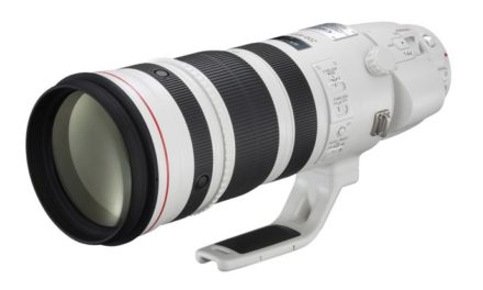 Canon EF 200-400 mm f/4L IS USM con Multiplicador 1,4x incorporado