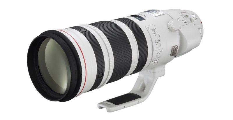 Canon EF 200-400 mm f/4L IS USM con Multiplicador 1,4x incorporado