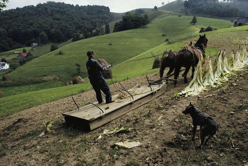 Getty Images otorga las primeras becas benéficas Grants for Good