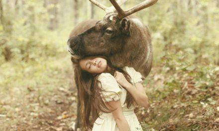 La magia de las fotos de Katerina Plotnikova