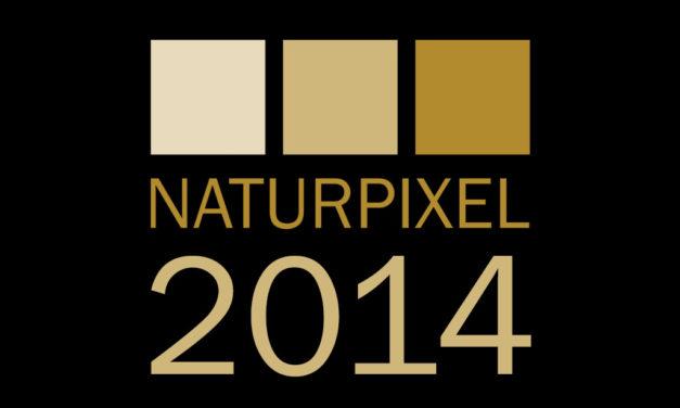 Lo más leído en Naturpixel durante el 2014