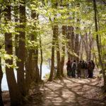 Curso de Fotografía en el Montseny, 5 de mayo 2012