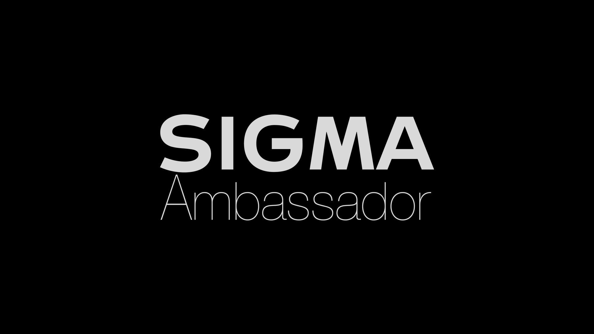 Descubriendo los embajadores de Sigma (y 6)