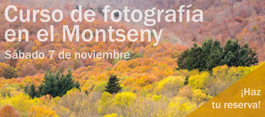 curso-de-fotografia-en-el-montseny