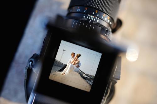 Imagen Cortesía de Shutterstock.com