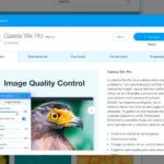 Muestra tus fotografías con Galería Wix Pro